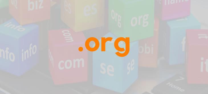 org Domain Uzantısı
